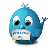 follow jenny demilo tweets